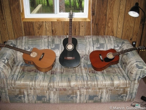 There will be chances to unwind after a long day of entomological bliss. Students often bring their guitars or music.